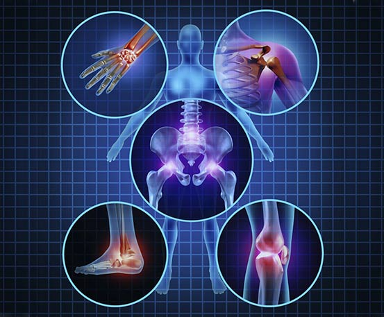 Expediente Clínico Electrónico esquemas anatómicos Armed